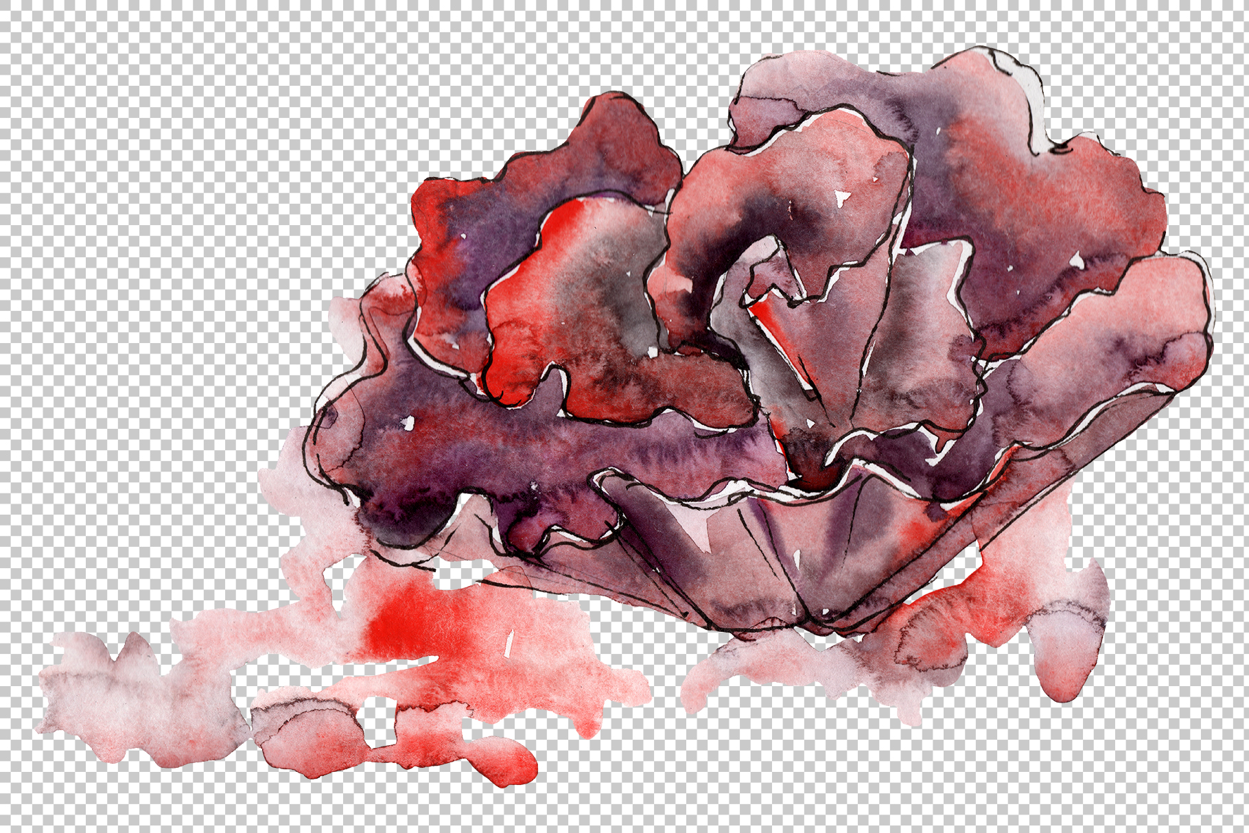 Corals for happiness watercolor png example image 5