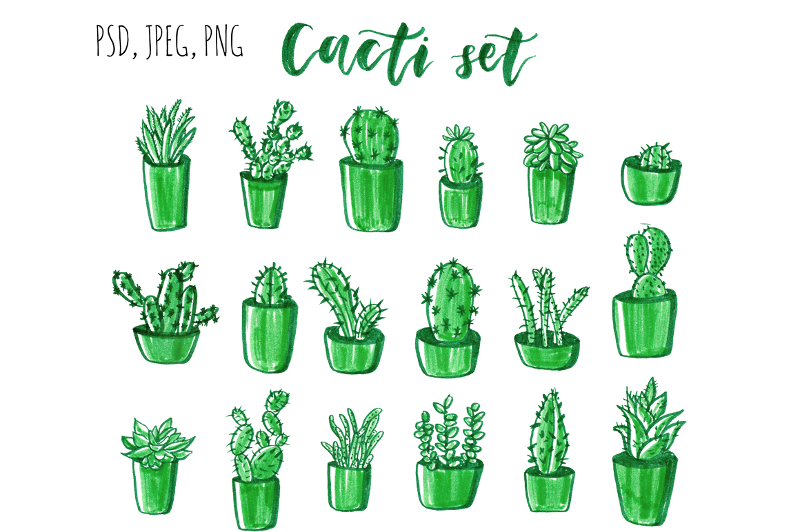 Cacti hand drawn set. example image 4