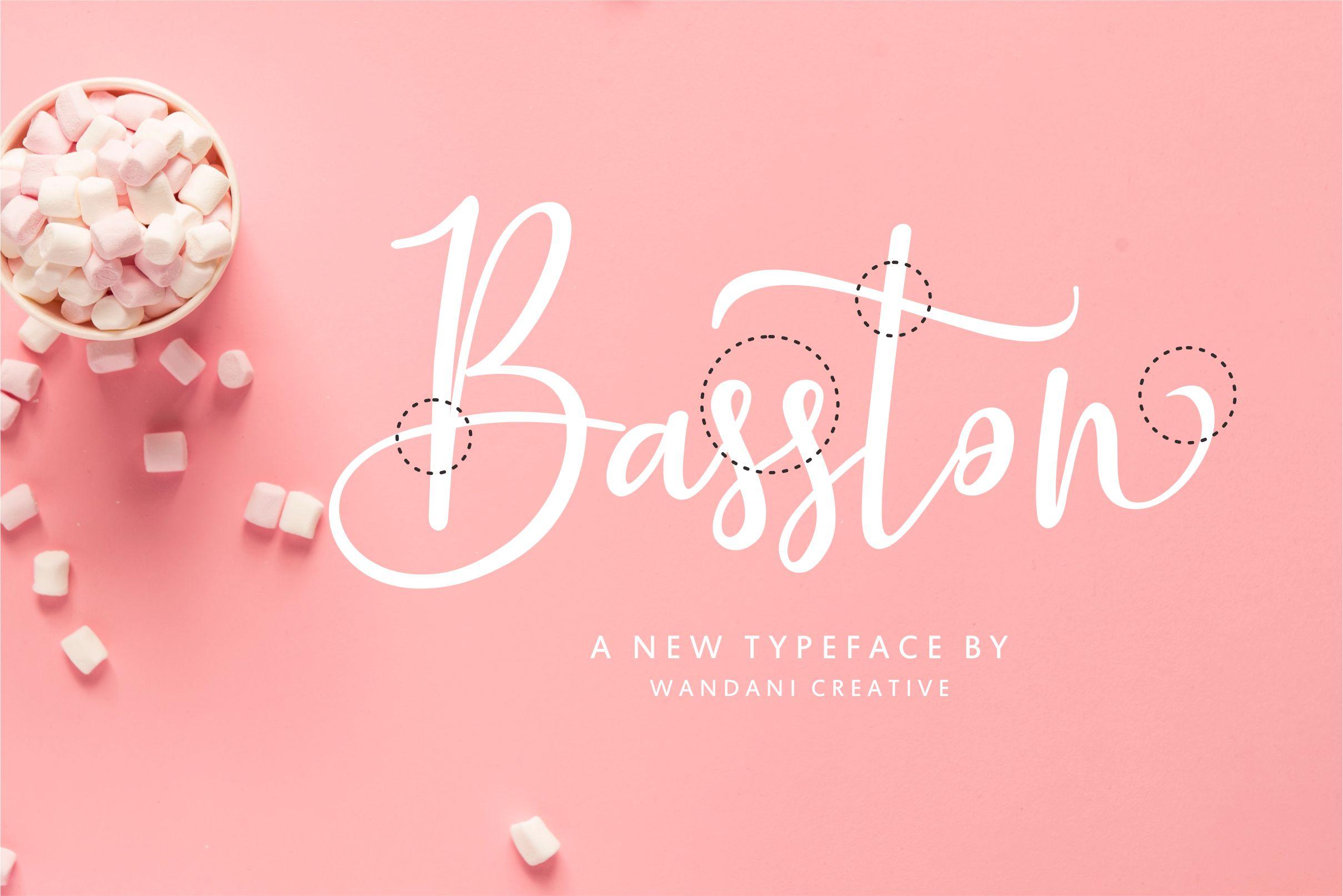 Basston Script example image 4