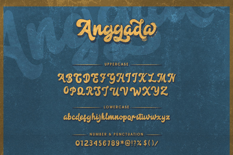 Anggada - Vintage Script Font example image 9