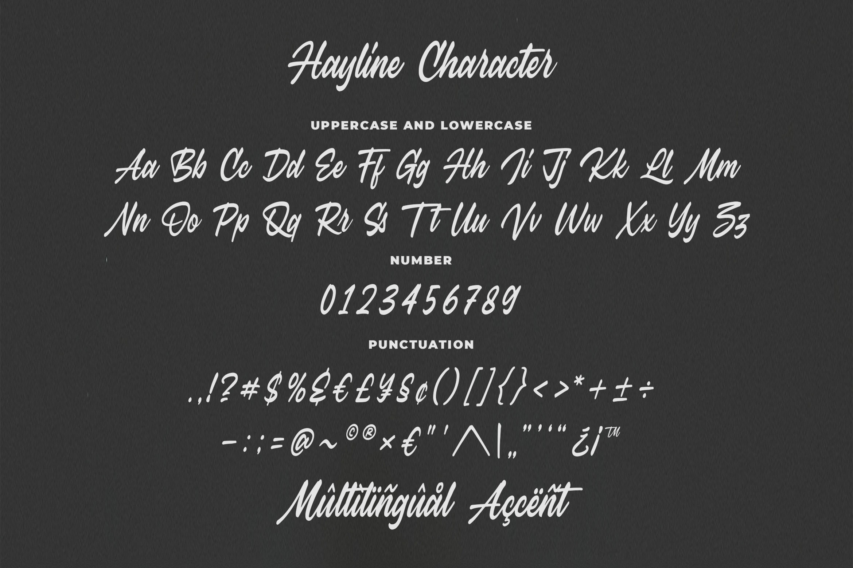 Hayline - Elegant Script Font example image 8