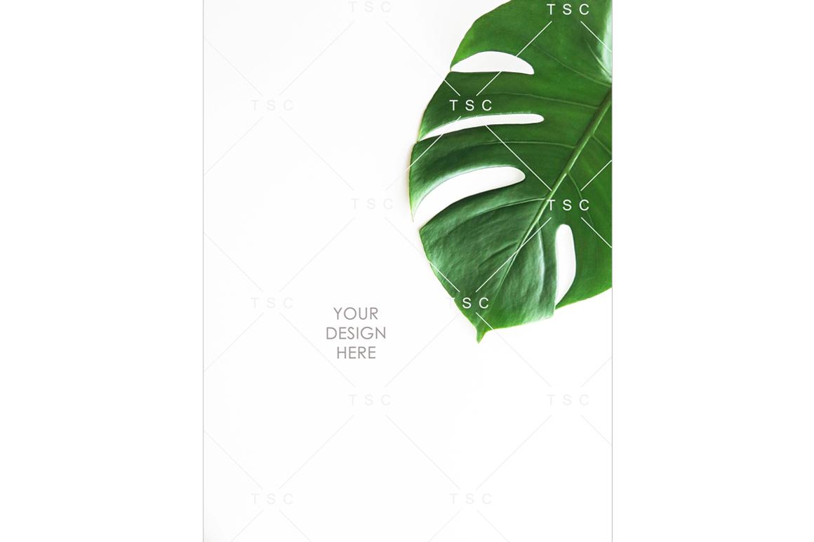 Portrait-mode Monstera Leaf Stock Photo example image 1