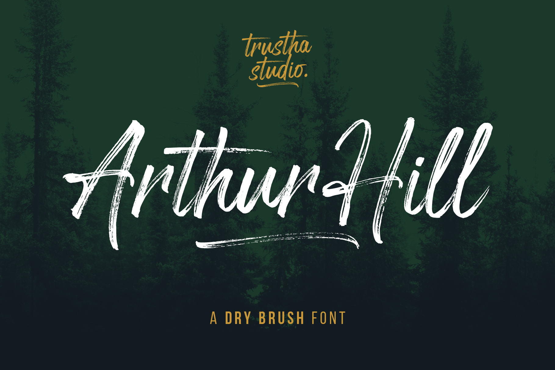 Arthur Hill Font example image 1