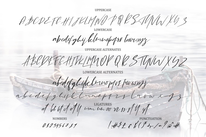Lila & Harley. Signature font example image 7