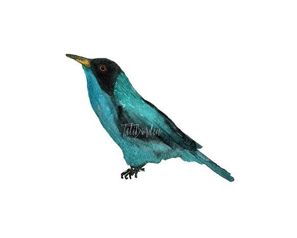 Watercolor Birds Clip Art example image 4