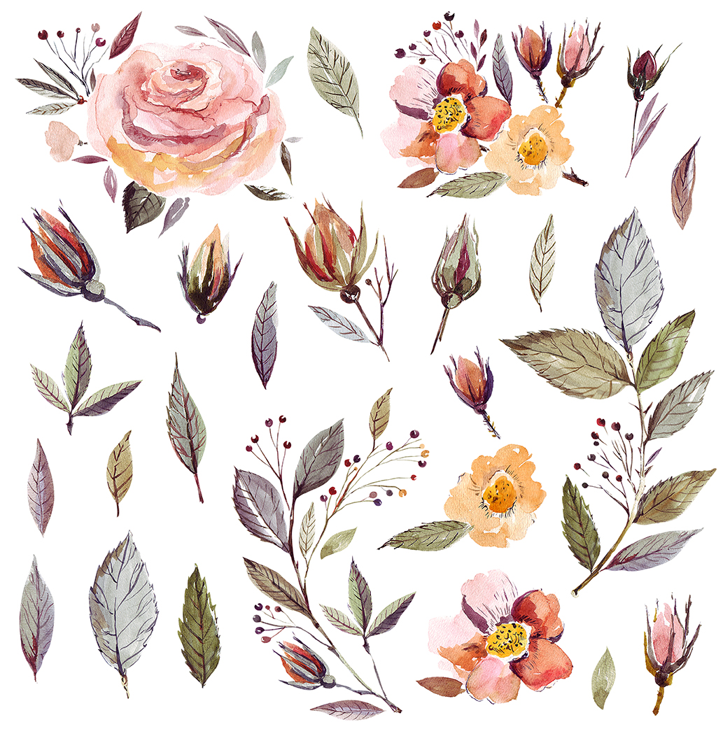 Watercolor Floral Collection example image 3