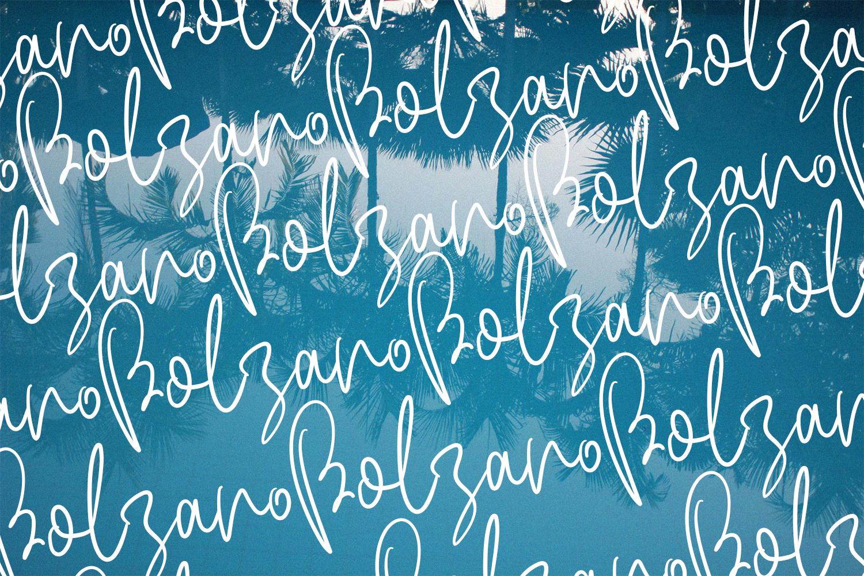 Bolzano - A Beautiful Script Font example image 2