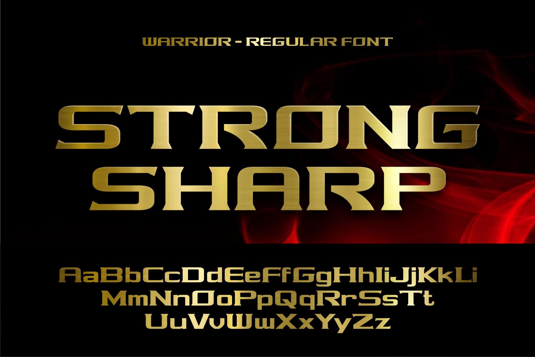 warrior example image 5