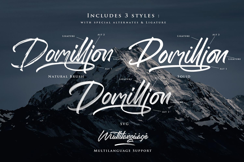 Domillion Brush Font example image 7
