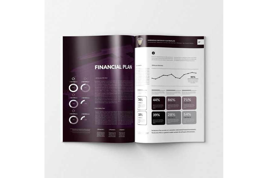 Professional Corporate Plan Template example image 6