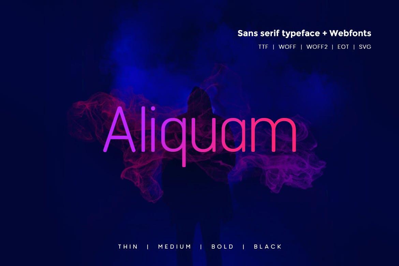 Aliquam - Modern Typeface WebFonts example image 1
