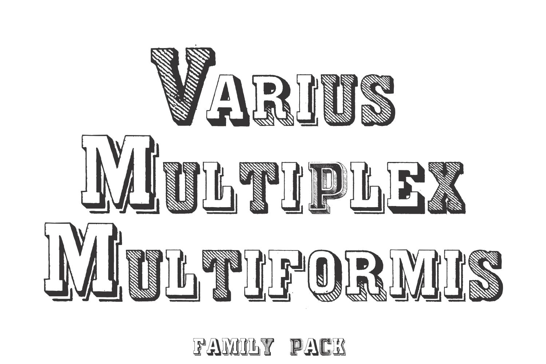 Varius Multiplex Multiformis (PACK) example image 1