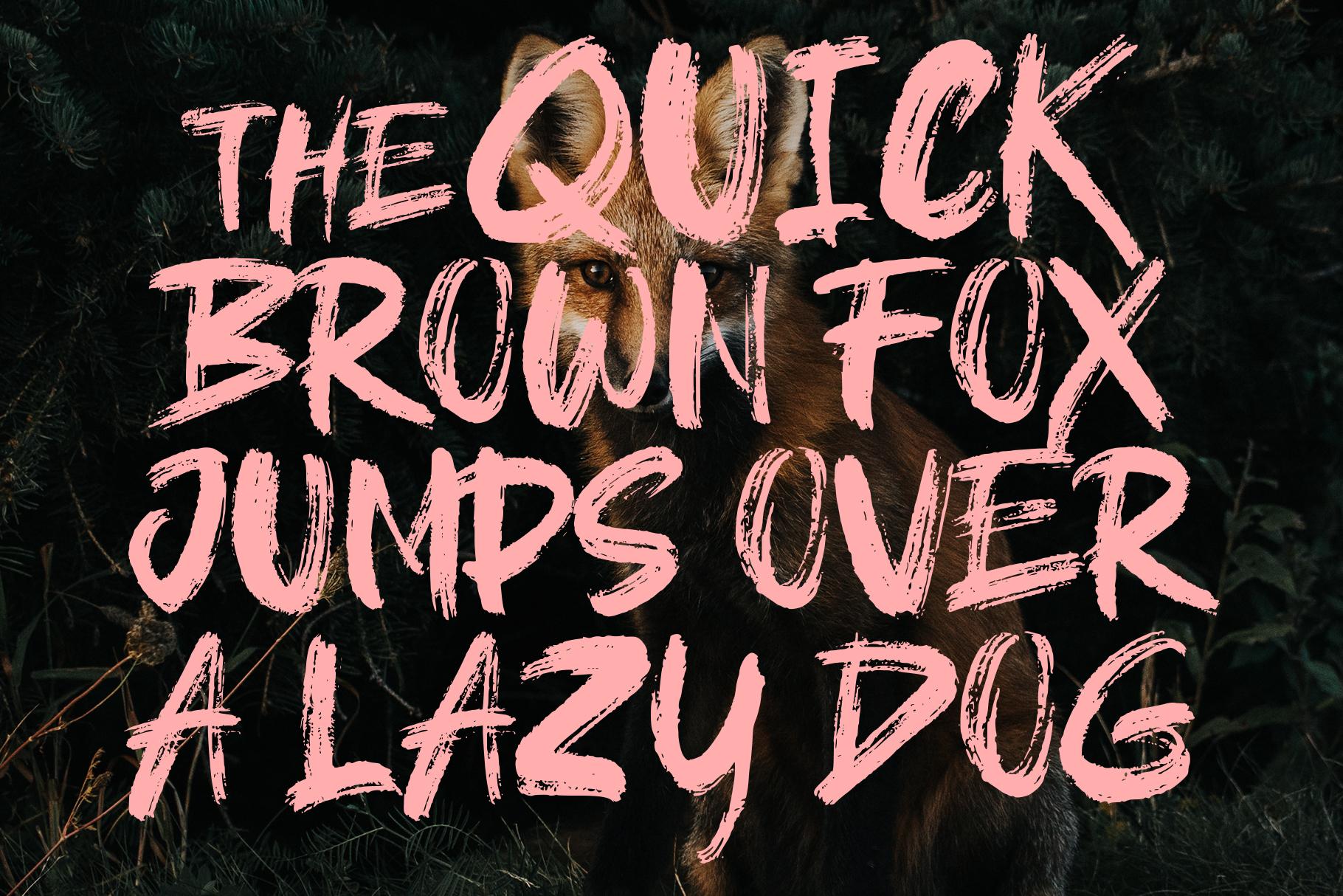 Brushield handwritten brush font example image 2