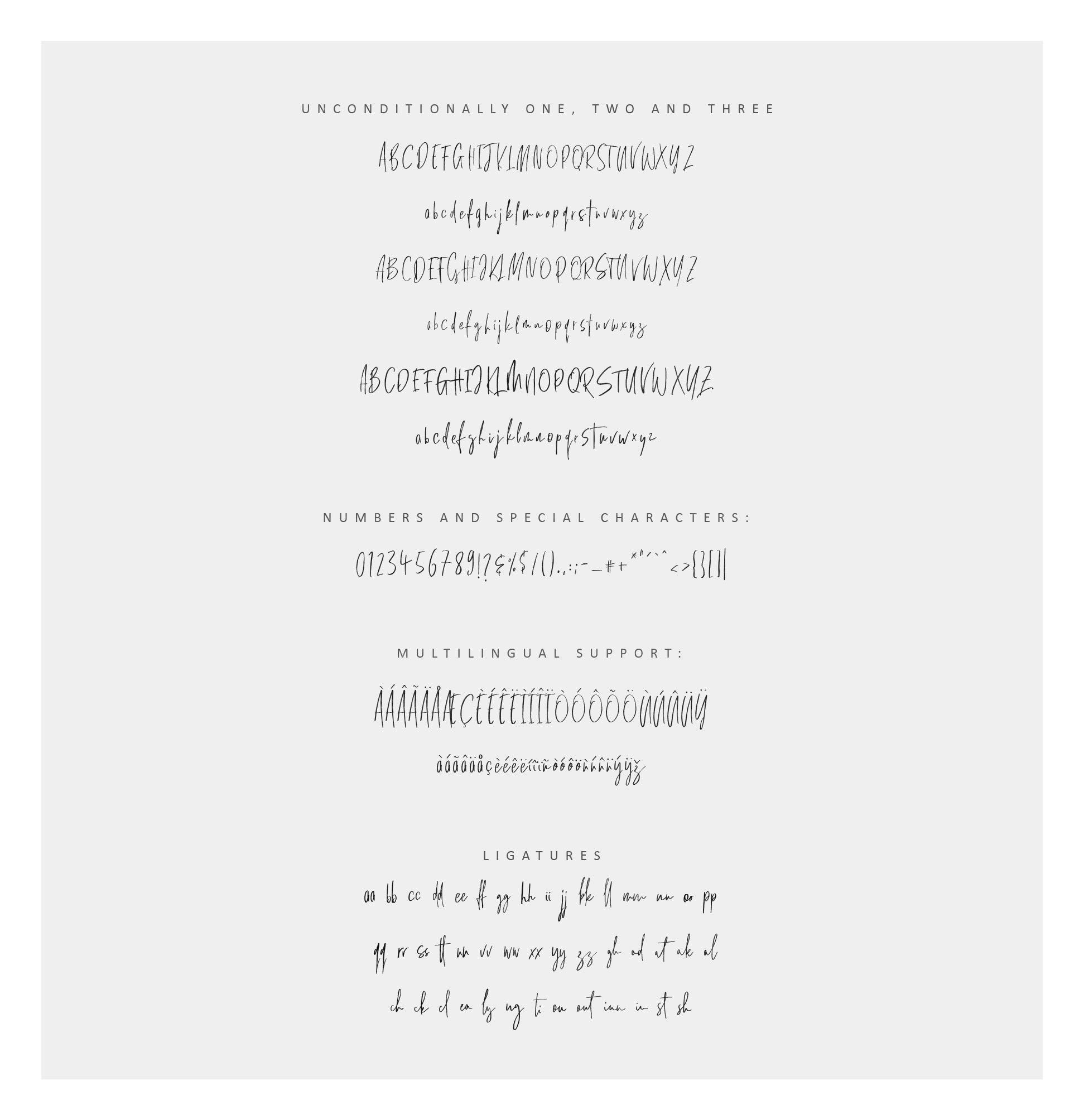 Unconditionally | Signature Script example image 5