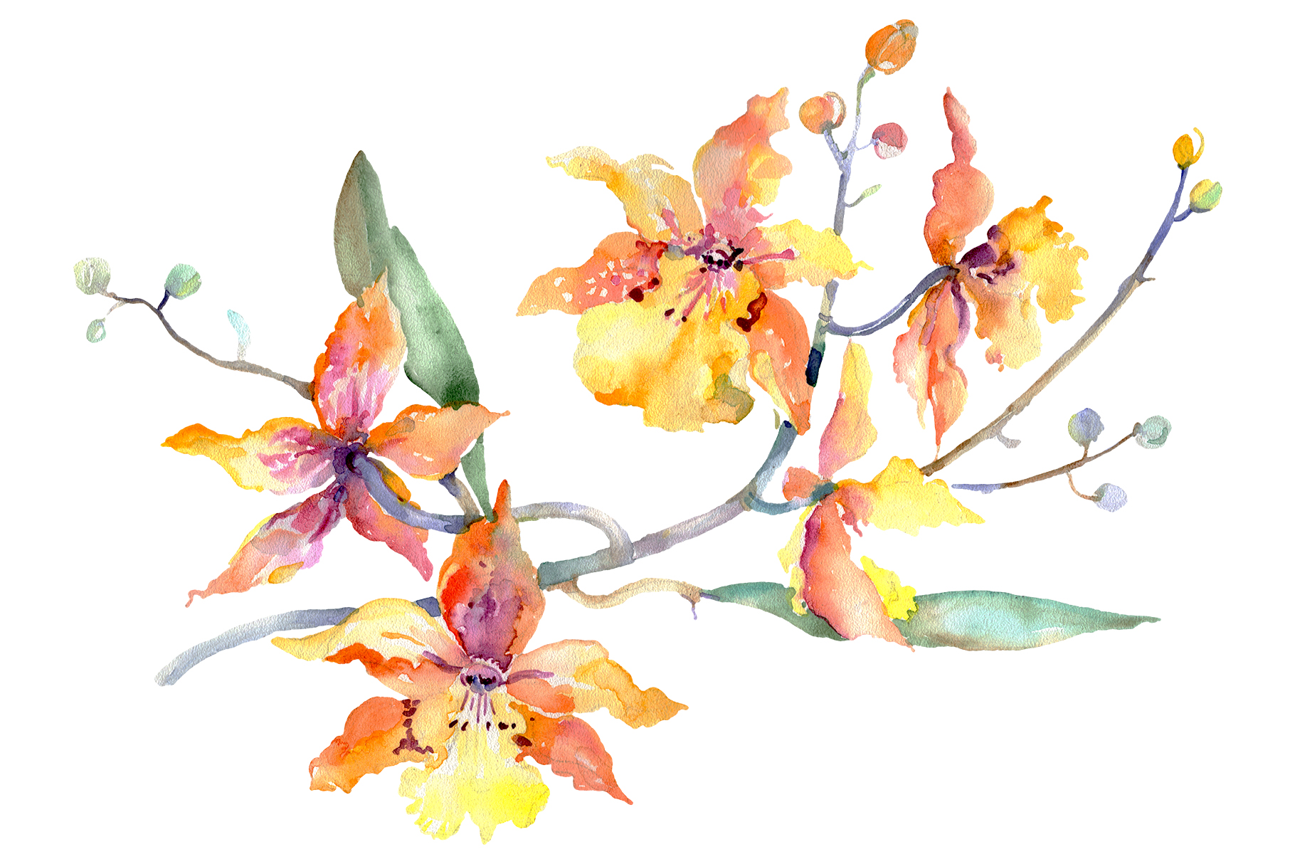 Branch of yellow orchids Watercolor png example image 1