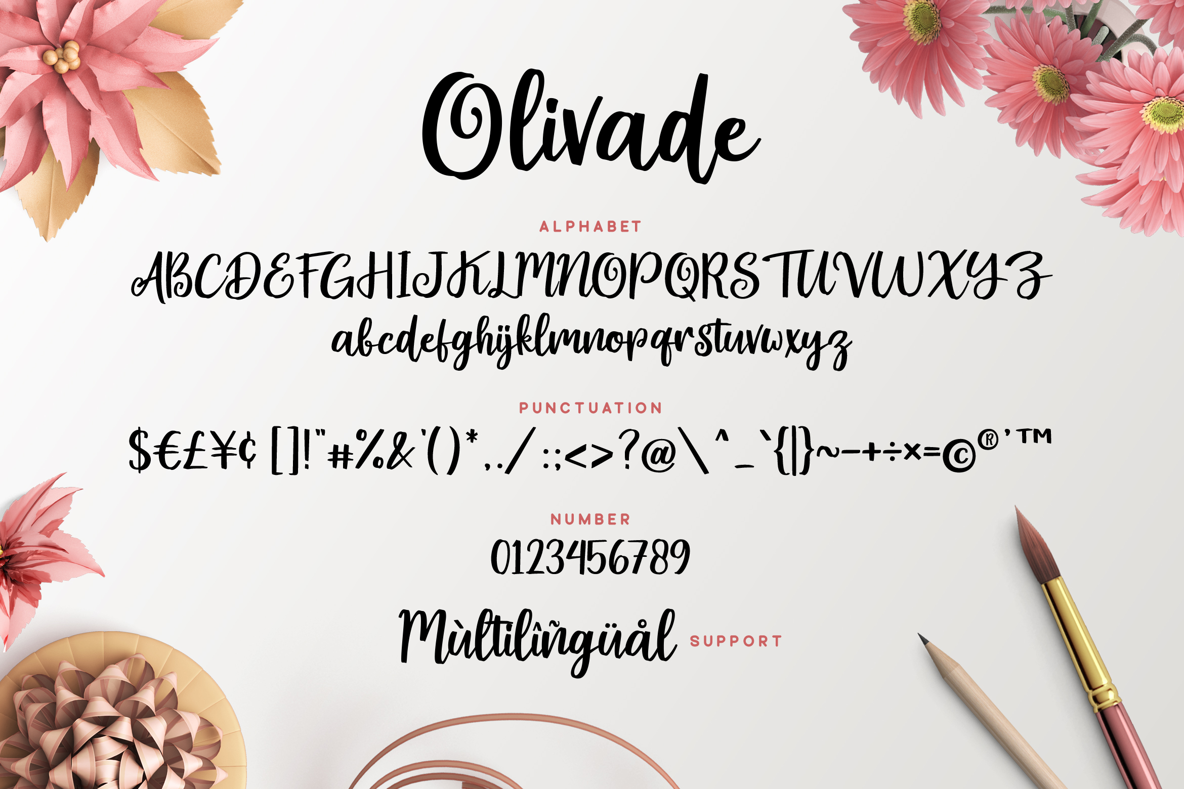 Olivade - Script Font example image 6