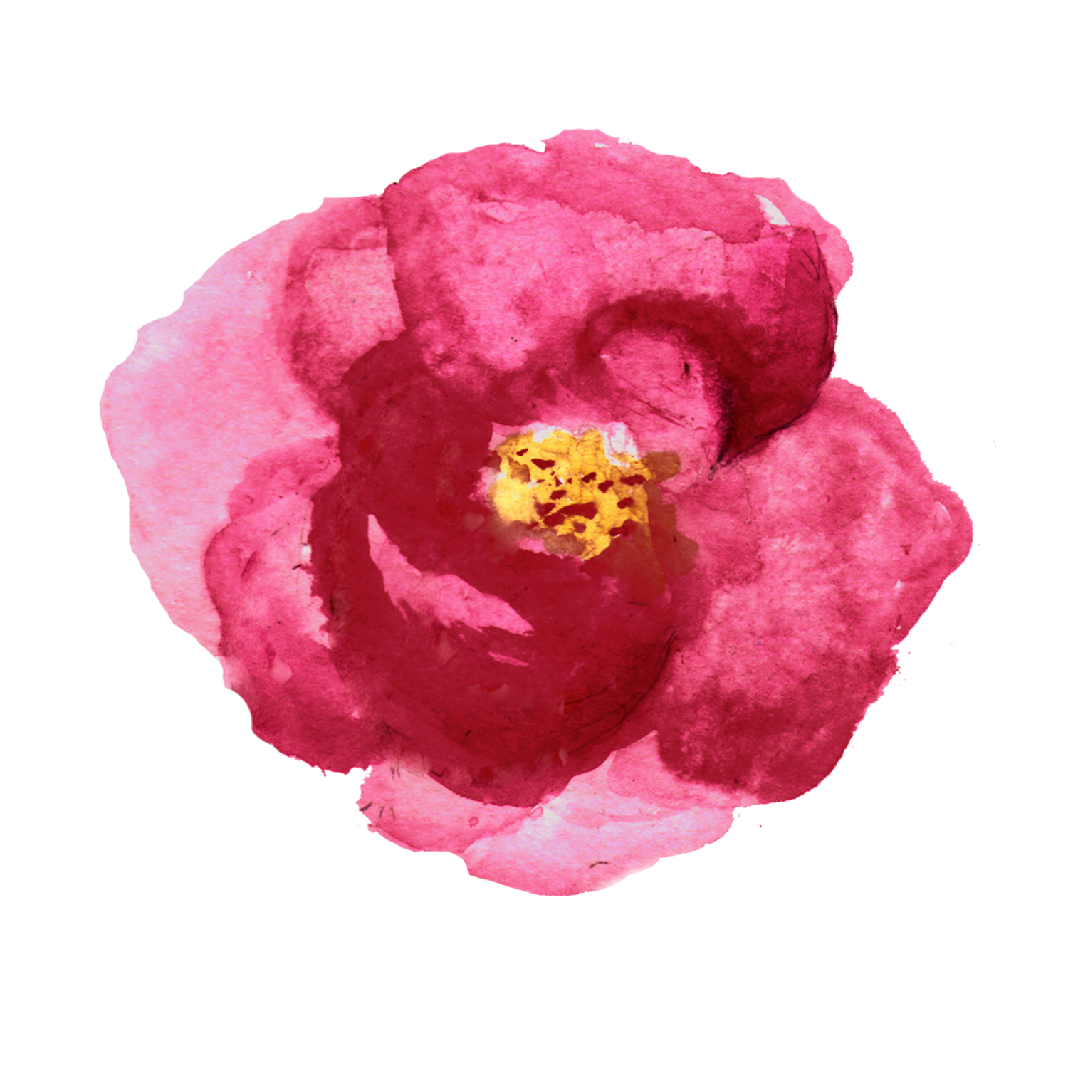 Watecolor Roses example image 4