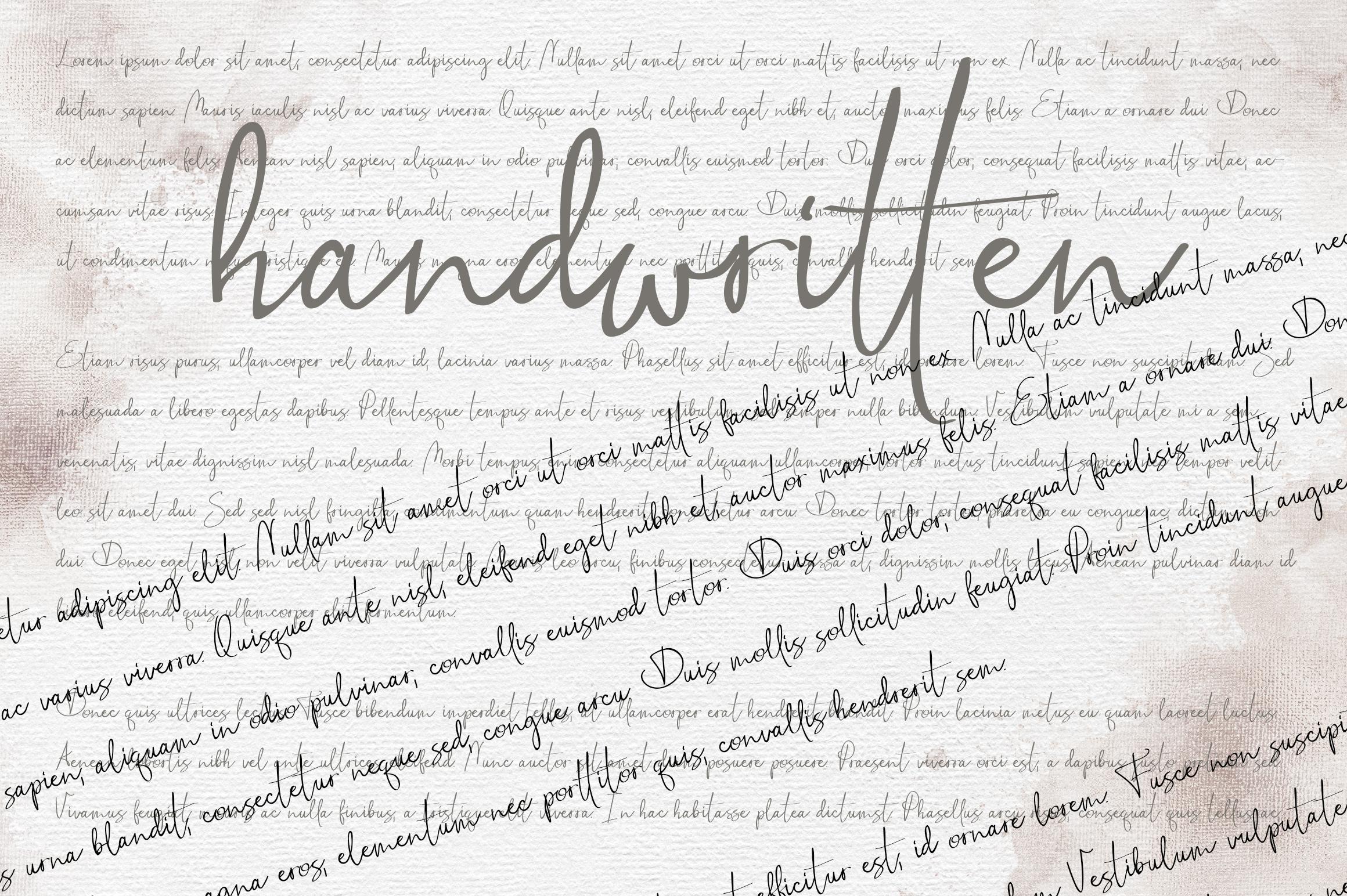 Stillness Script Font example image 5