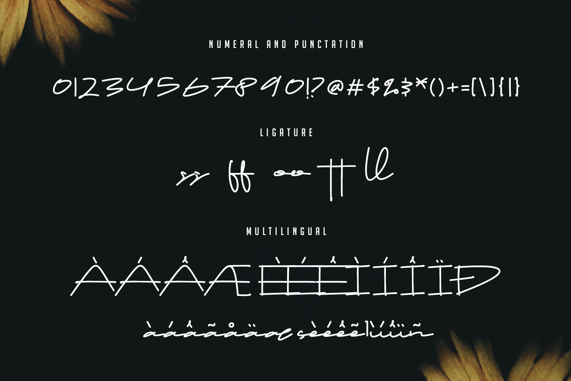 Drop Stay - Signature Font example image 13