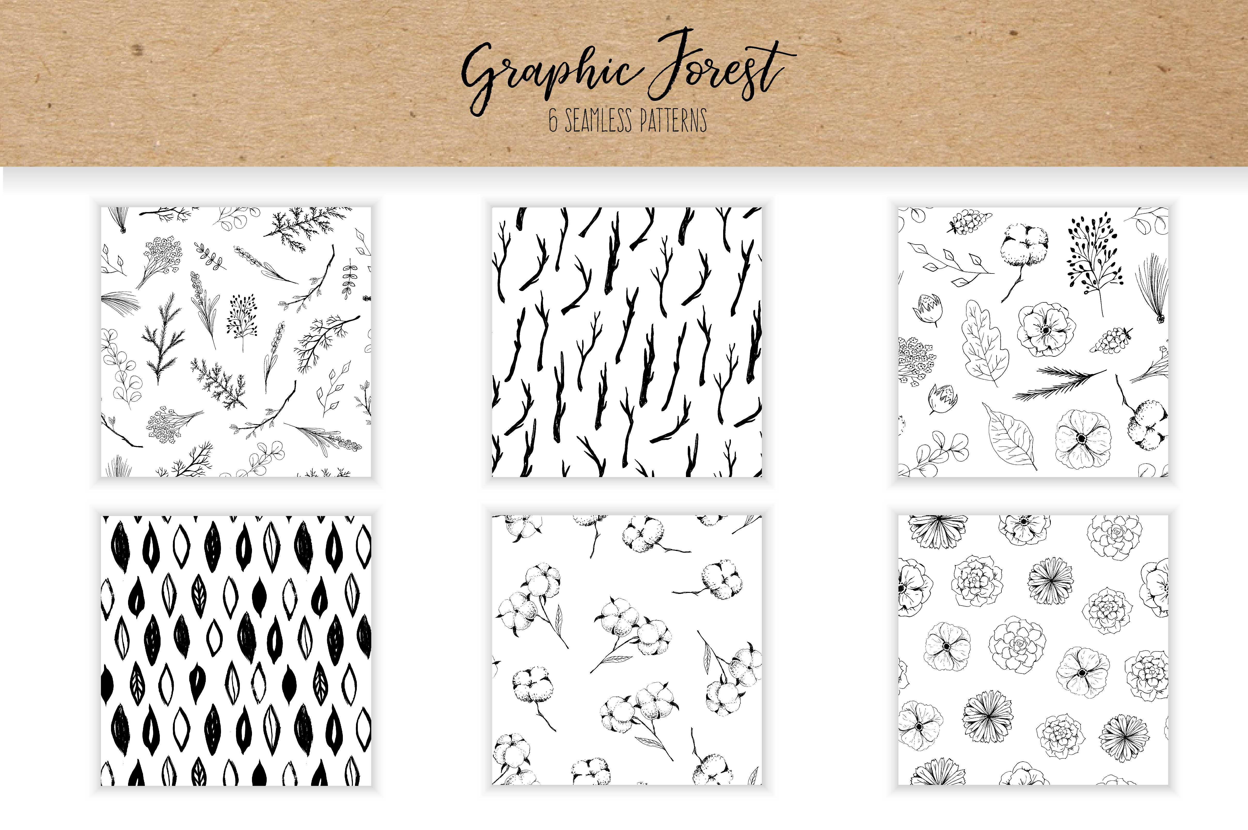 Vector Graphic Forest Collection example image 2