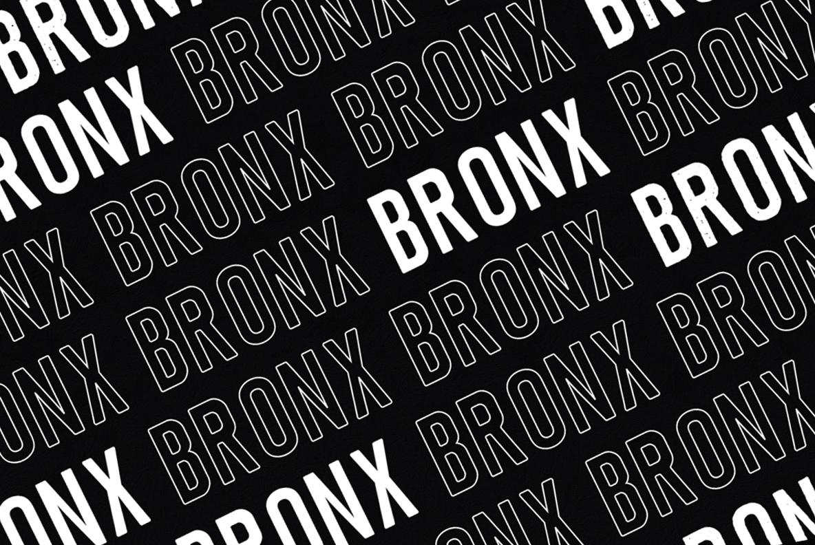 Bronx example image 3