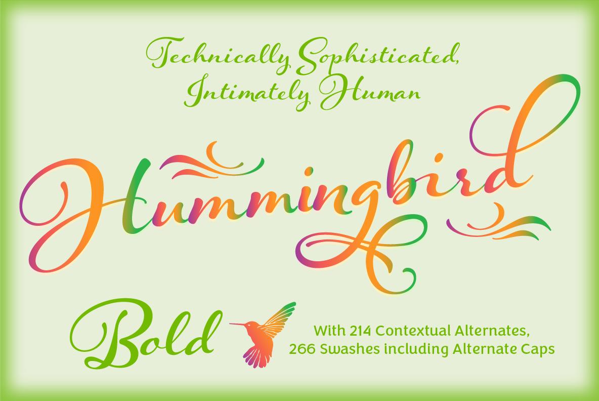 Hummingbird Bold example image 1