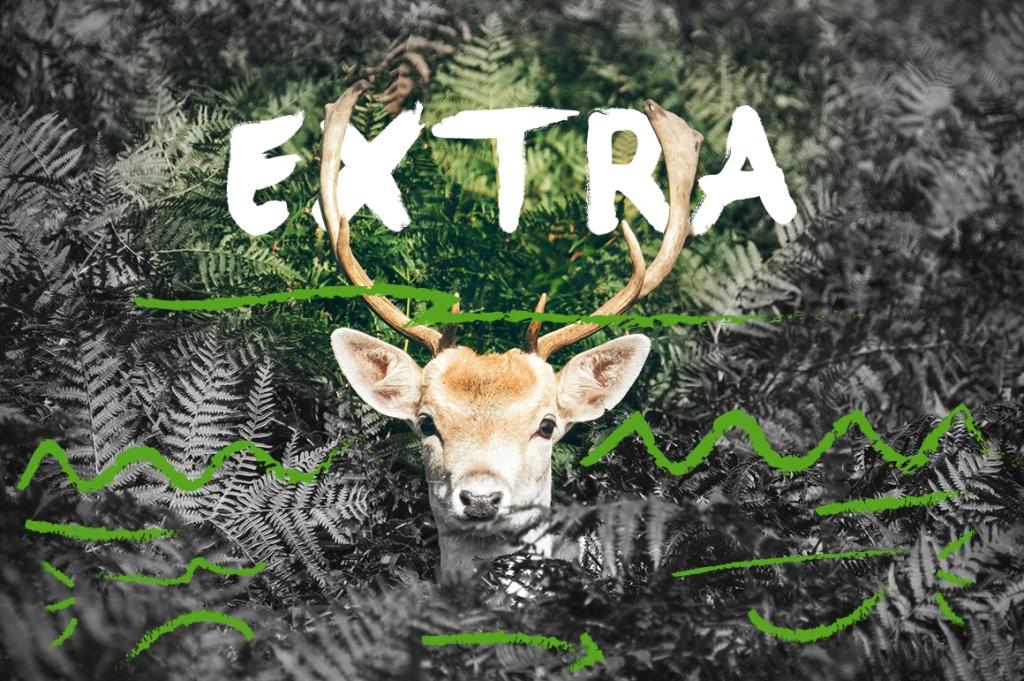 Brasku Font + Extras example image 5