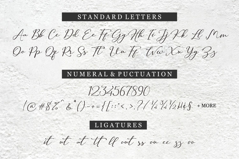 Hilland | Signature Font example image 11