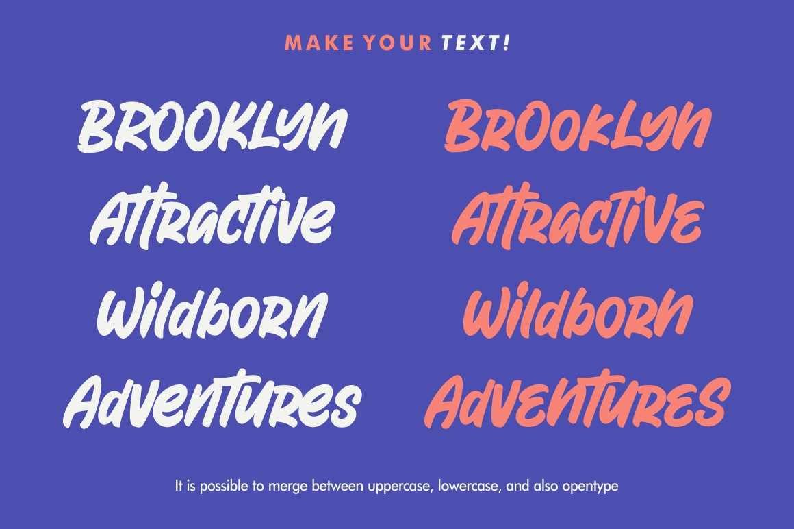Attractype Reborn - Stylish Display Font example image 4