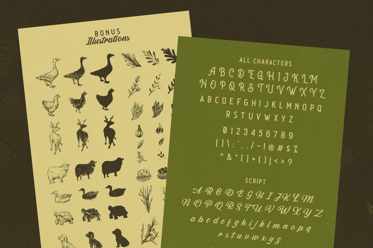 Sabatons - Vintage Font Duo example image 6