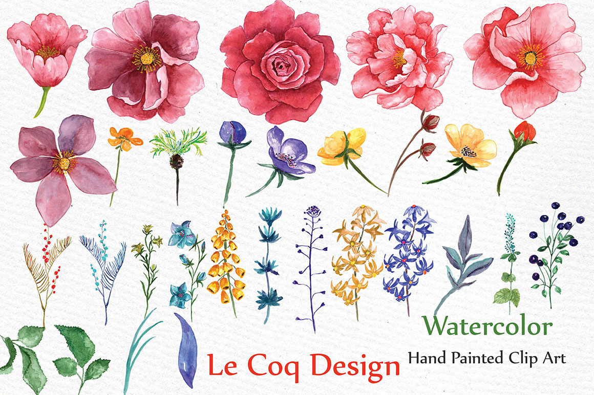 Watercolor peonies clip art example image 3