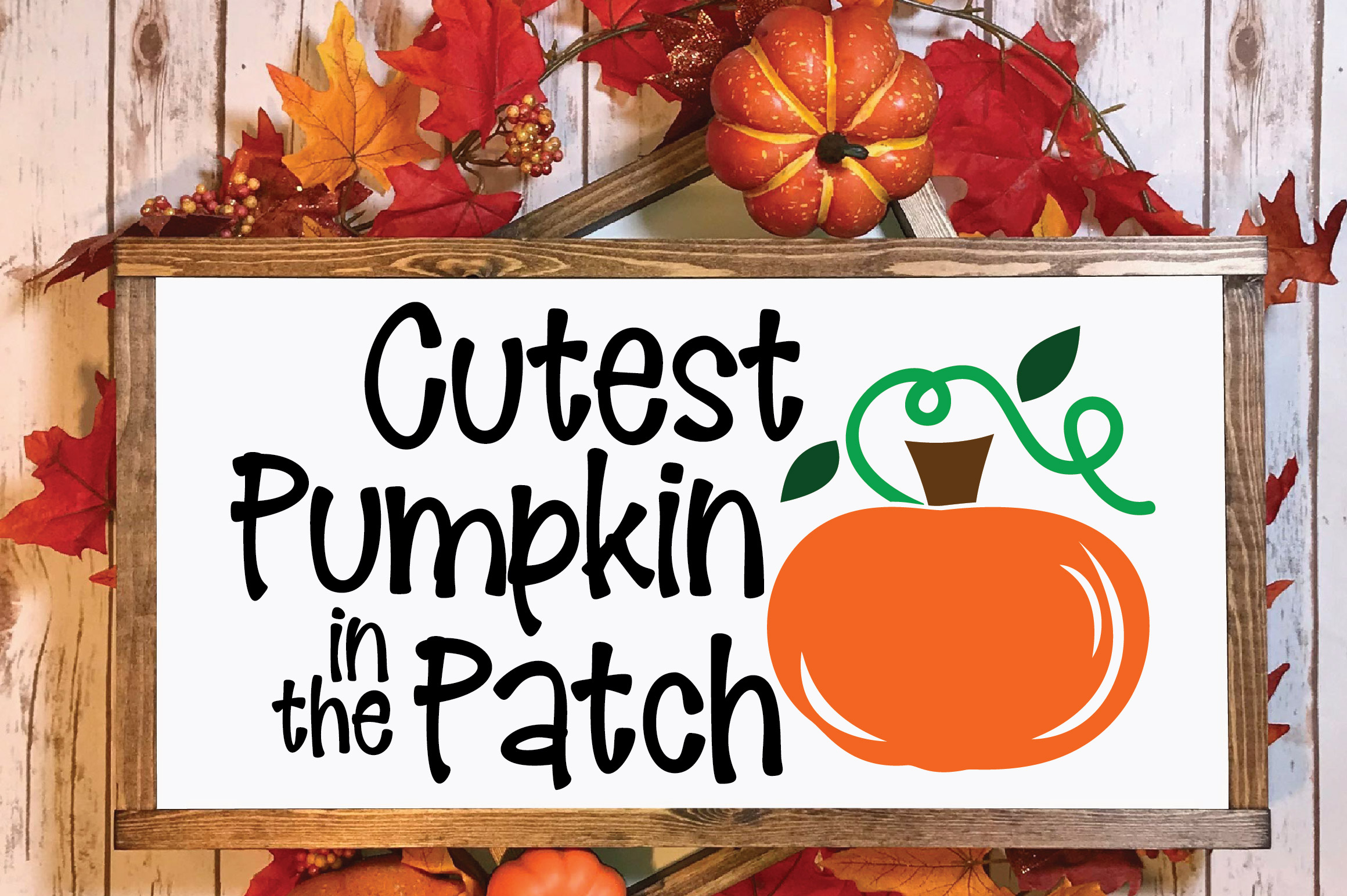 Cutest Pumpkin in the Patch SVG Cut File - Fall Pumpkin SVG example image 2