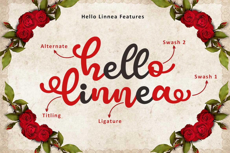 Hello Linnea example image 12