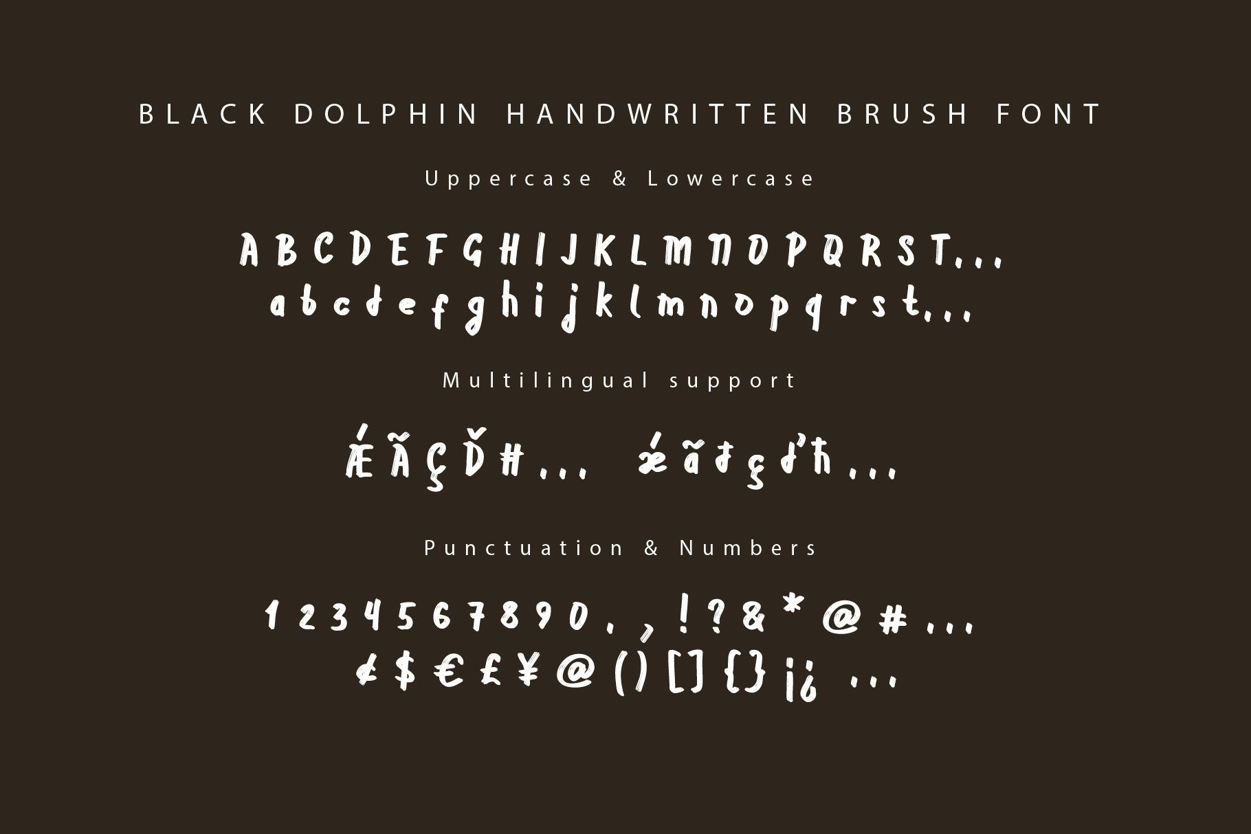 Black Dolphin |Multilingual Sans & Signature Font Duo example image 4