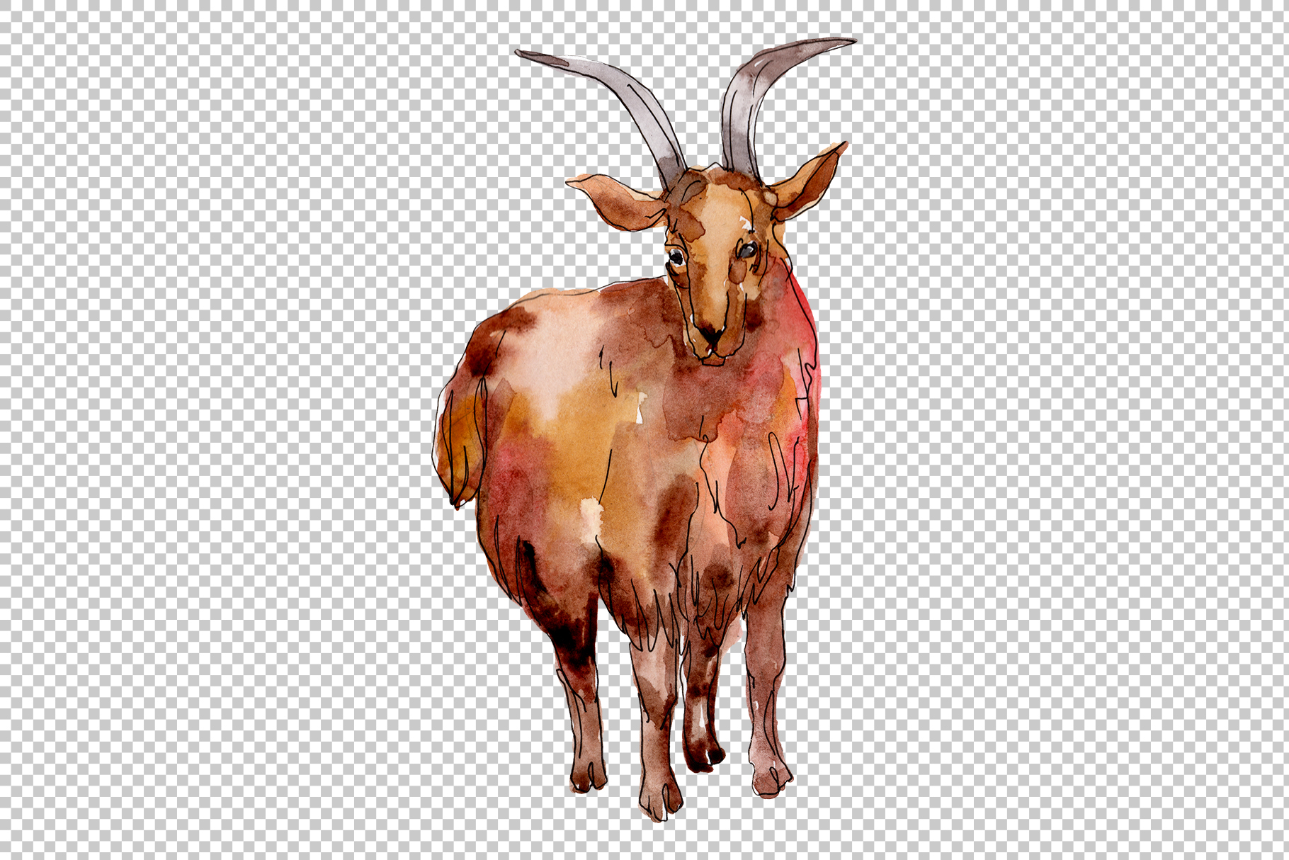Farm animals Goat Watercolor png example image 3