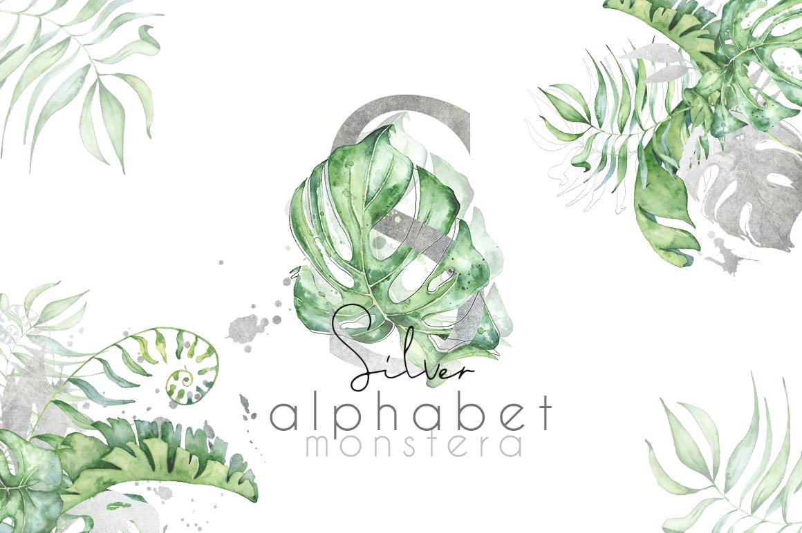 Silver Monstera - tropical alphabet example image 1