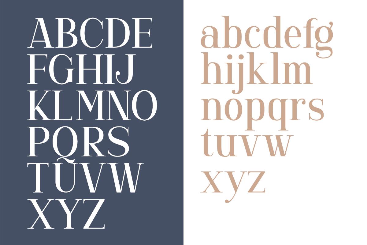 Gorgone - A Versatile Serif example image 9