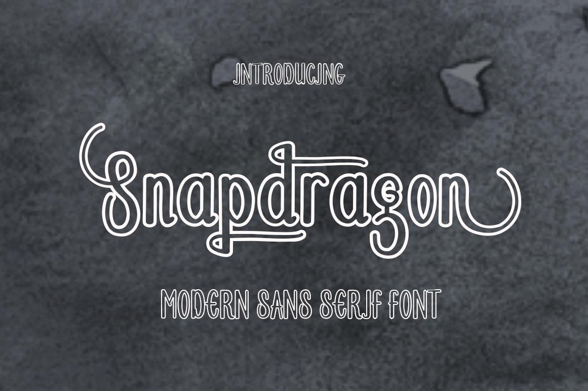 Calligraphy Font Bundles example image 11
