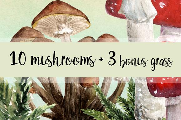10 Watercolor Mushroom Set + 3 Bonus example image 1