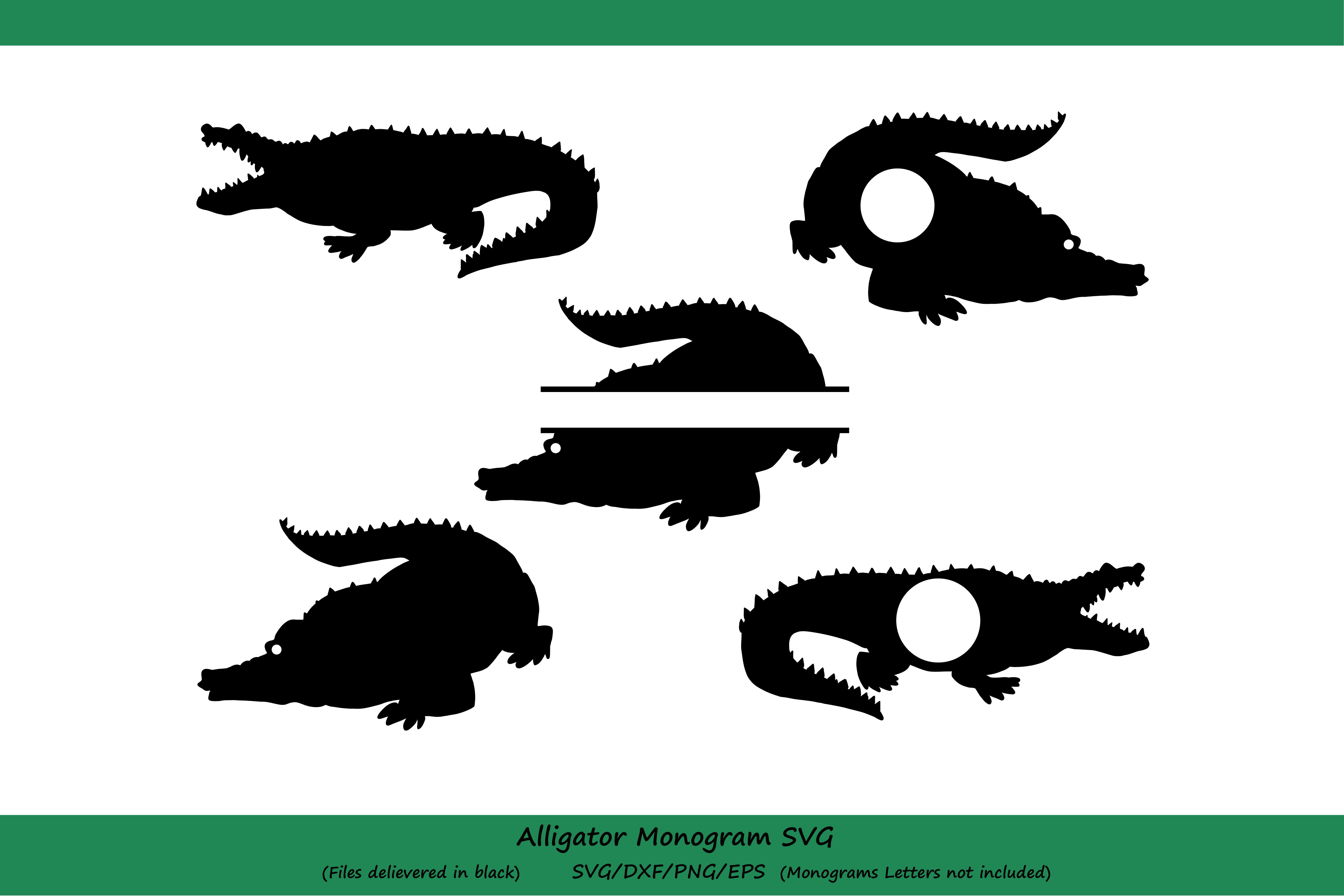 Alligator SVG, Alligator monogram svg, crocodile svg, Reptile svg, animal svg, Cut file silhouette files, Cricut files, svg, dxf, eps, png. example image 2