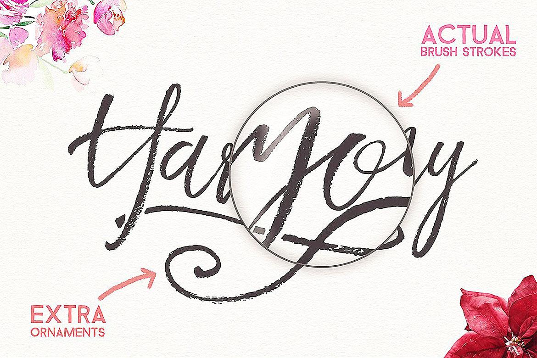 Harmony King - Brush Font example image 6