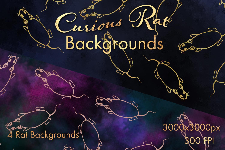 Curious Rat Backgrounds - 4 Image Set example image 1