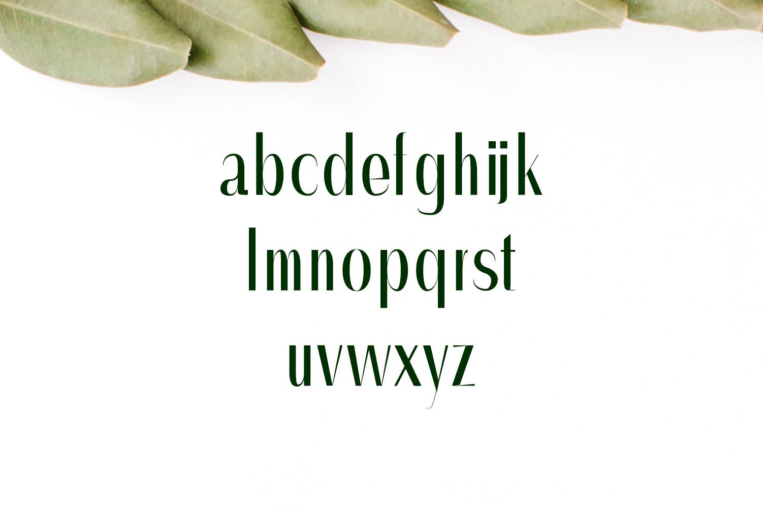 Severn Sans Serif Font Family example image 3