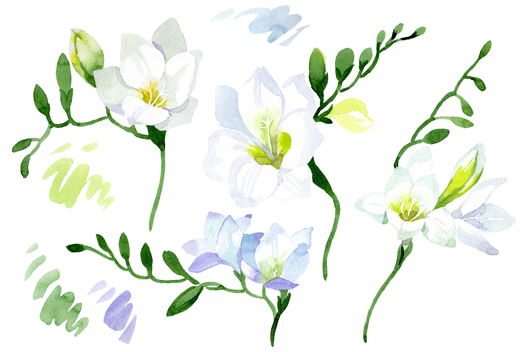 White Freesia Watercolor png example image 1