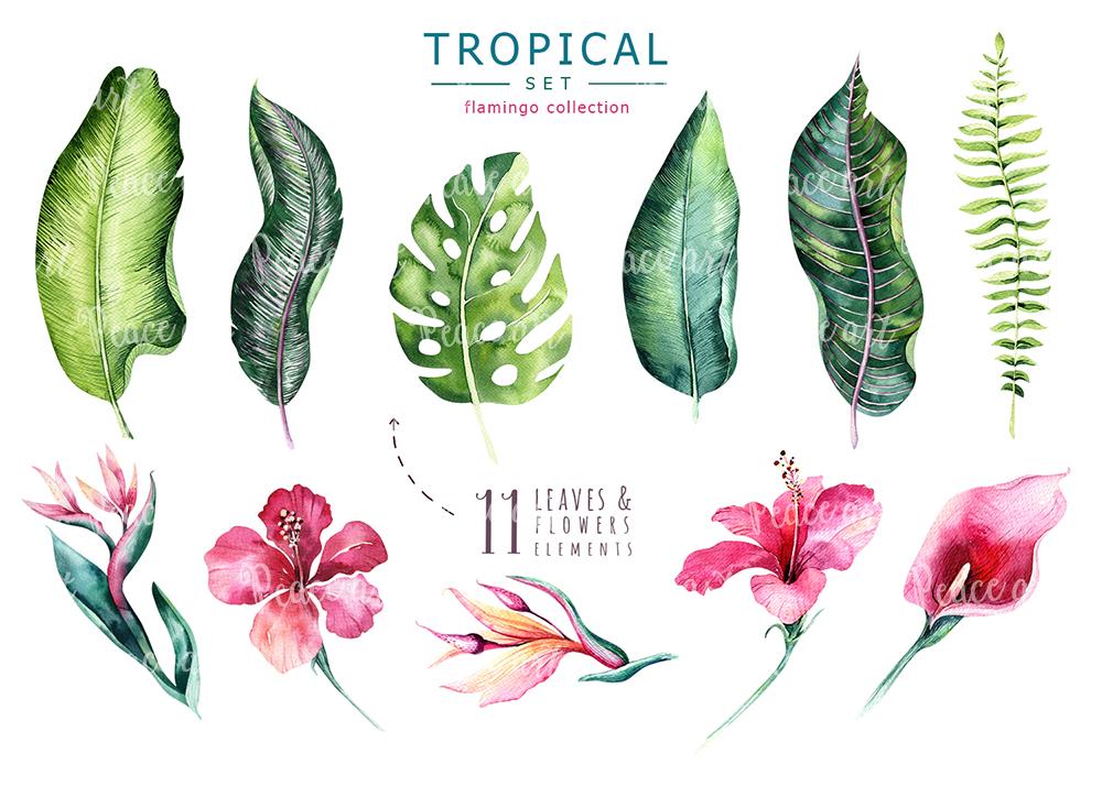 Tropical set II. Flamingo collection example image 2