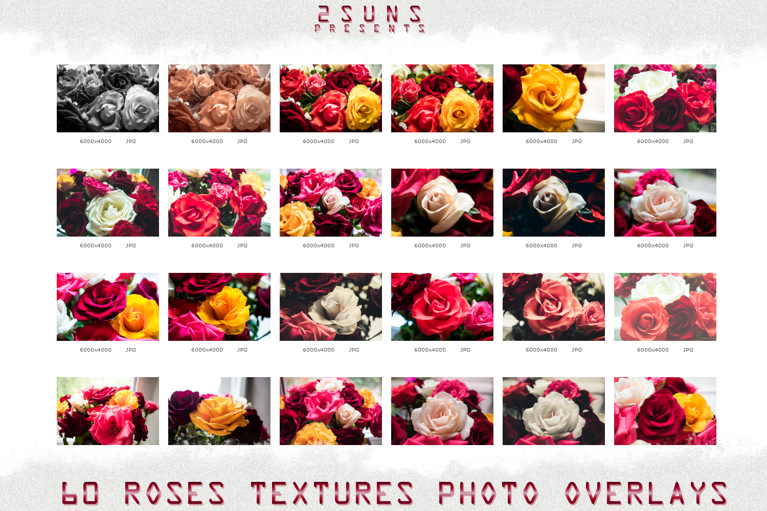 image relating to Printable Textures titled Obtain picture overlays crimson rose petals printable textures