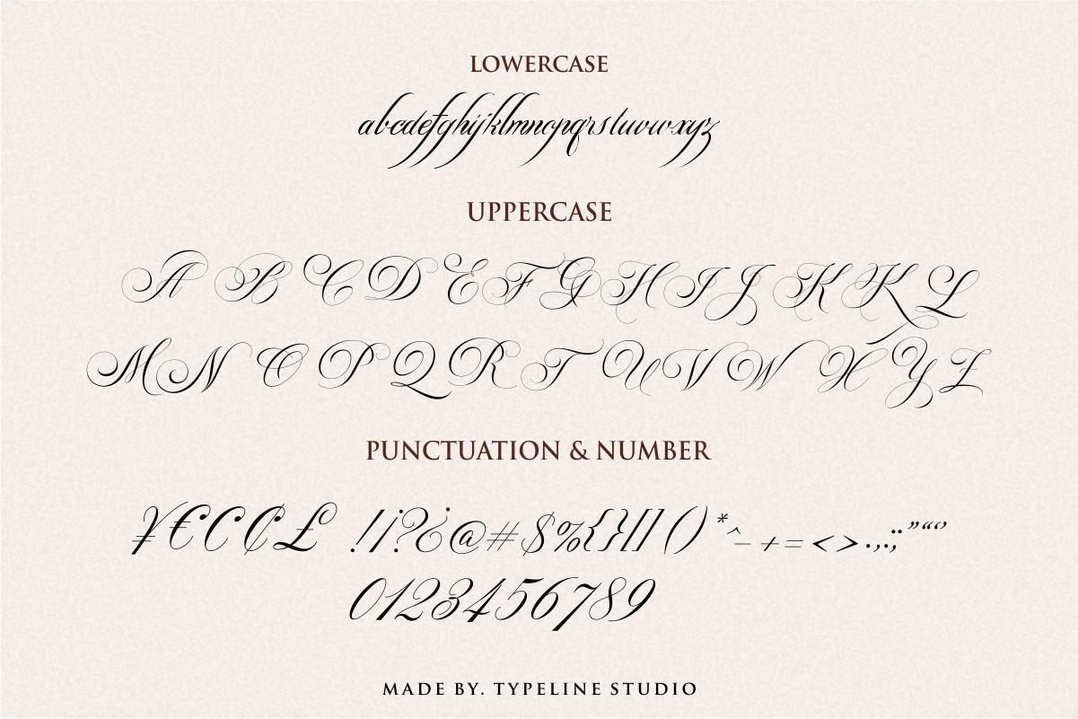 Switzerland Elegant Stylish Calligraphy Script example image 9