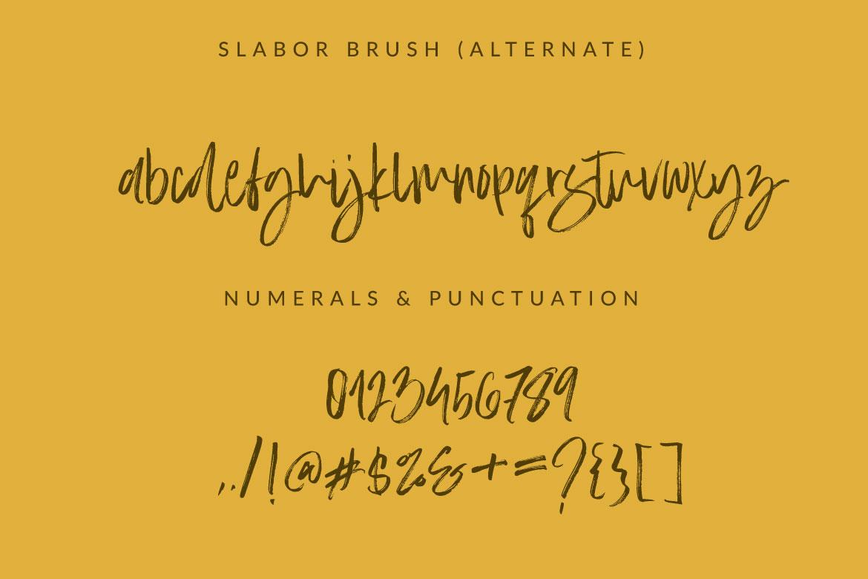 Slabor Brush example image 2