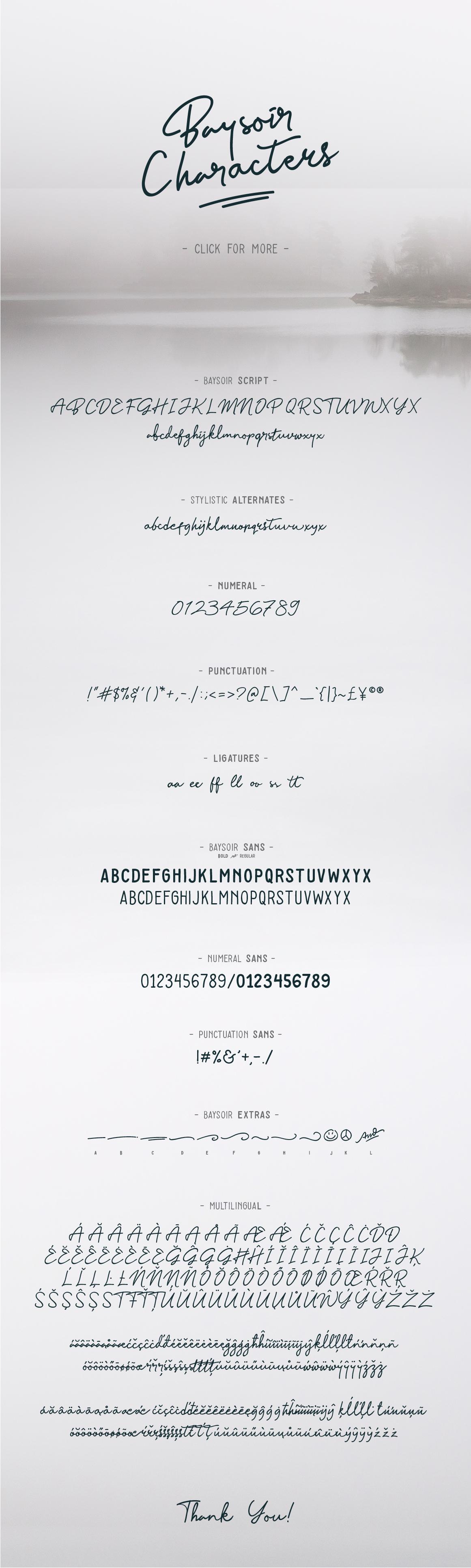 Baysoir Duo Handwritten Free Texture example image 7