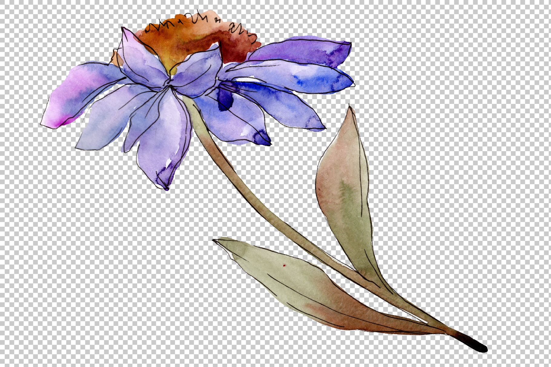 Bouquet blue of asters and daisies watercolor png example image 2